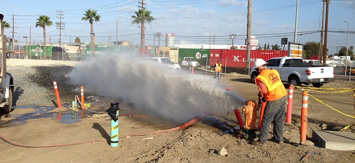 water line specialist testing a fire hydrant during the day with palm trees and power lines in the distance